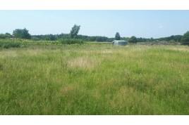 Продається земельна ділянка в с. Свидівок